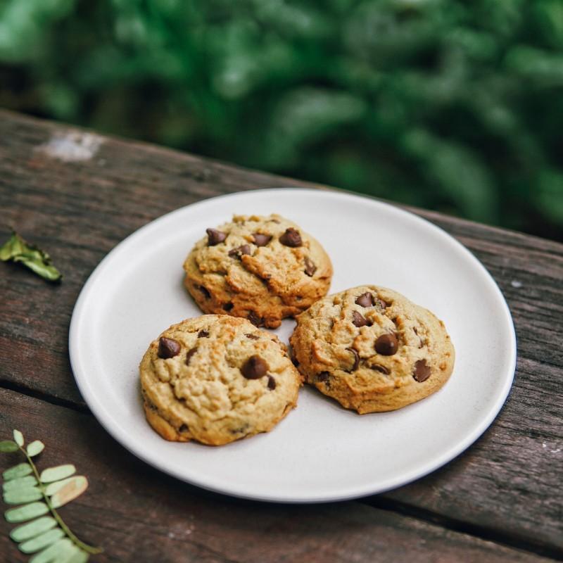 Politique de confidentialité - cookies (crédit photo Khajonkiet Noobut @Unsplash)